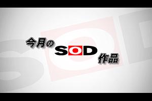 今月のSOD作品