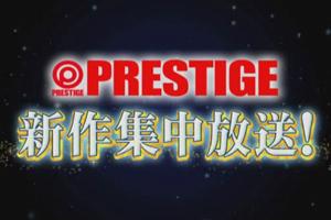 プレステージ新作初放送づくし!