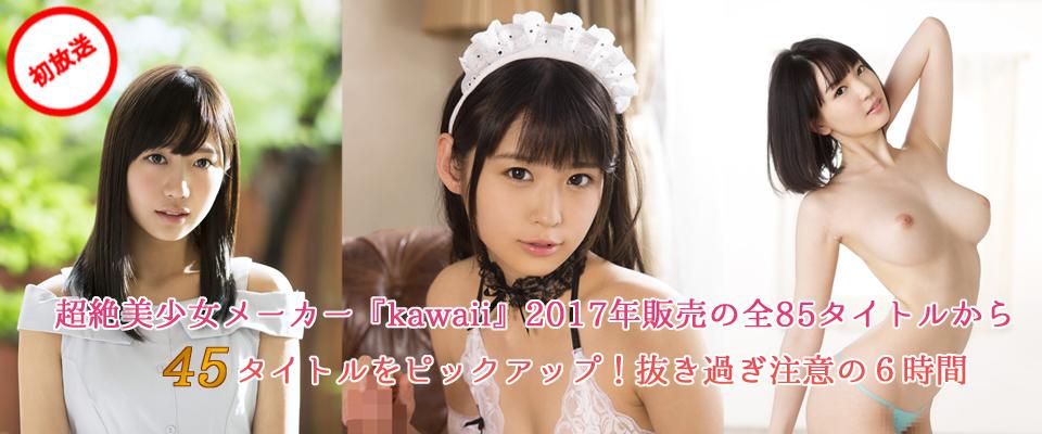 超絶美少女メーカー『kawaii』2017年販売の全85タイトルから45タイトルをピックアップ!抜き過ぎ注意の6時間